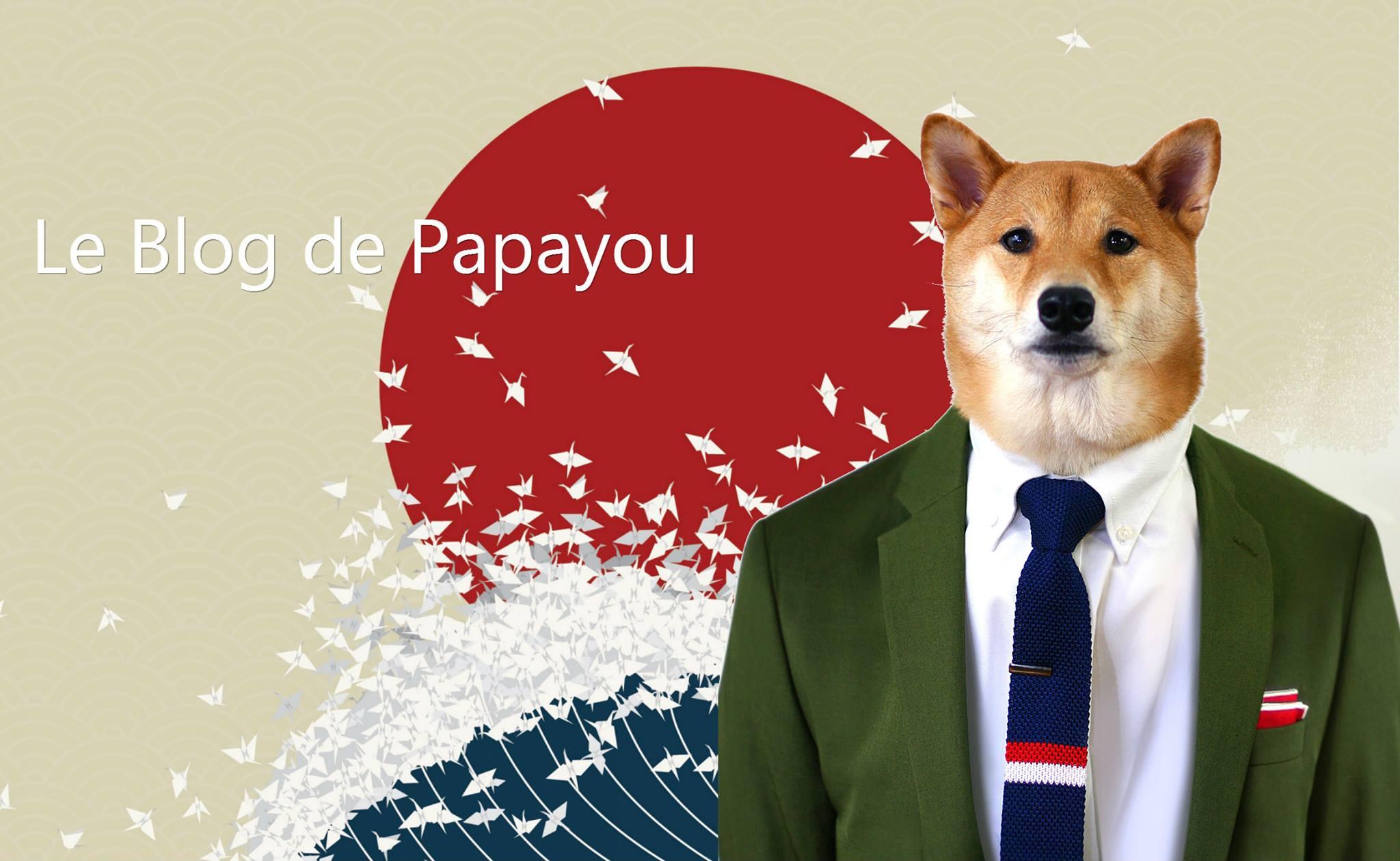 Le bbq de papayou 1 acheter au japon depuis la belgique for Job depuis chez soi