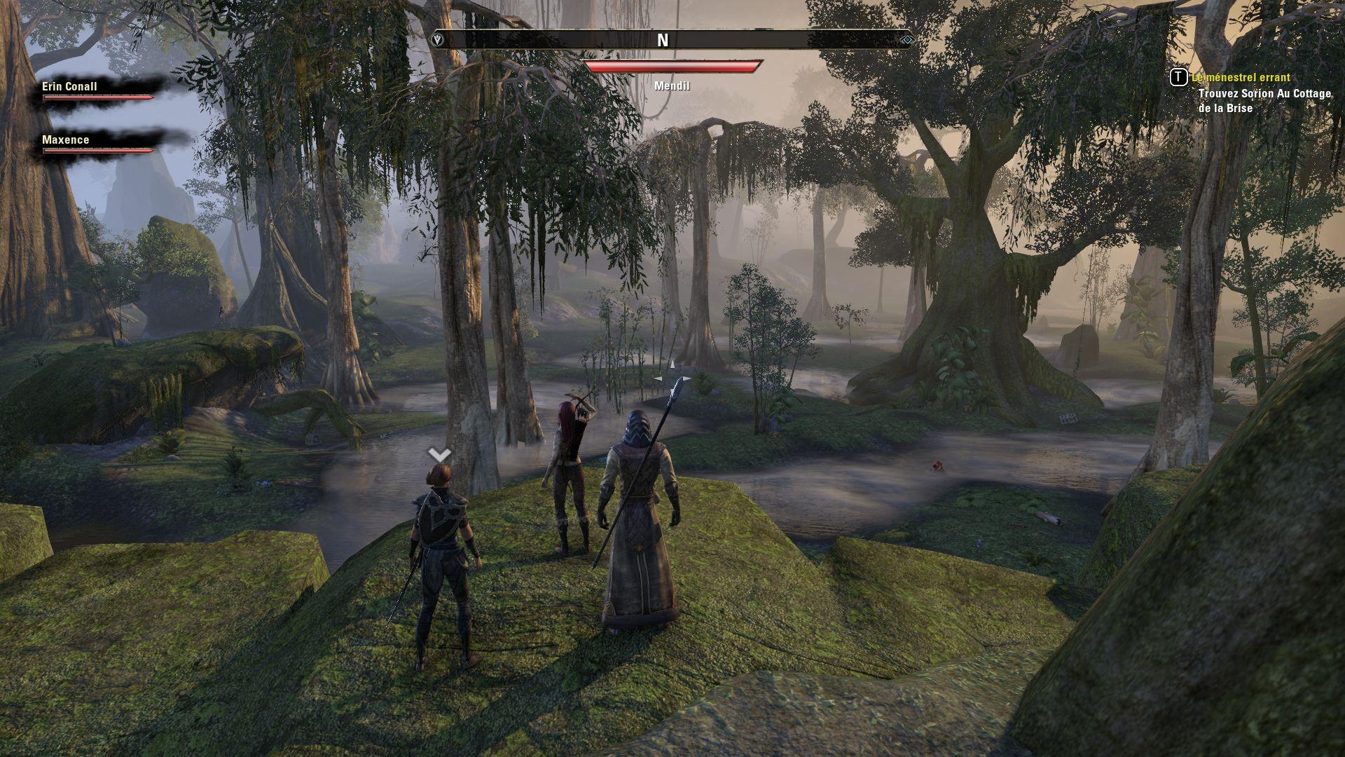 Elder Scrolls Online Image du jeu sur PC (90)