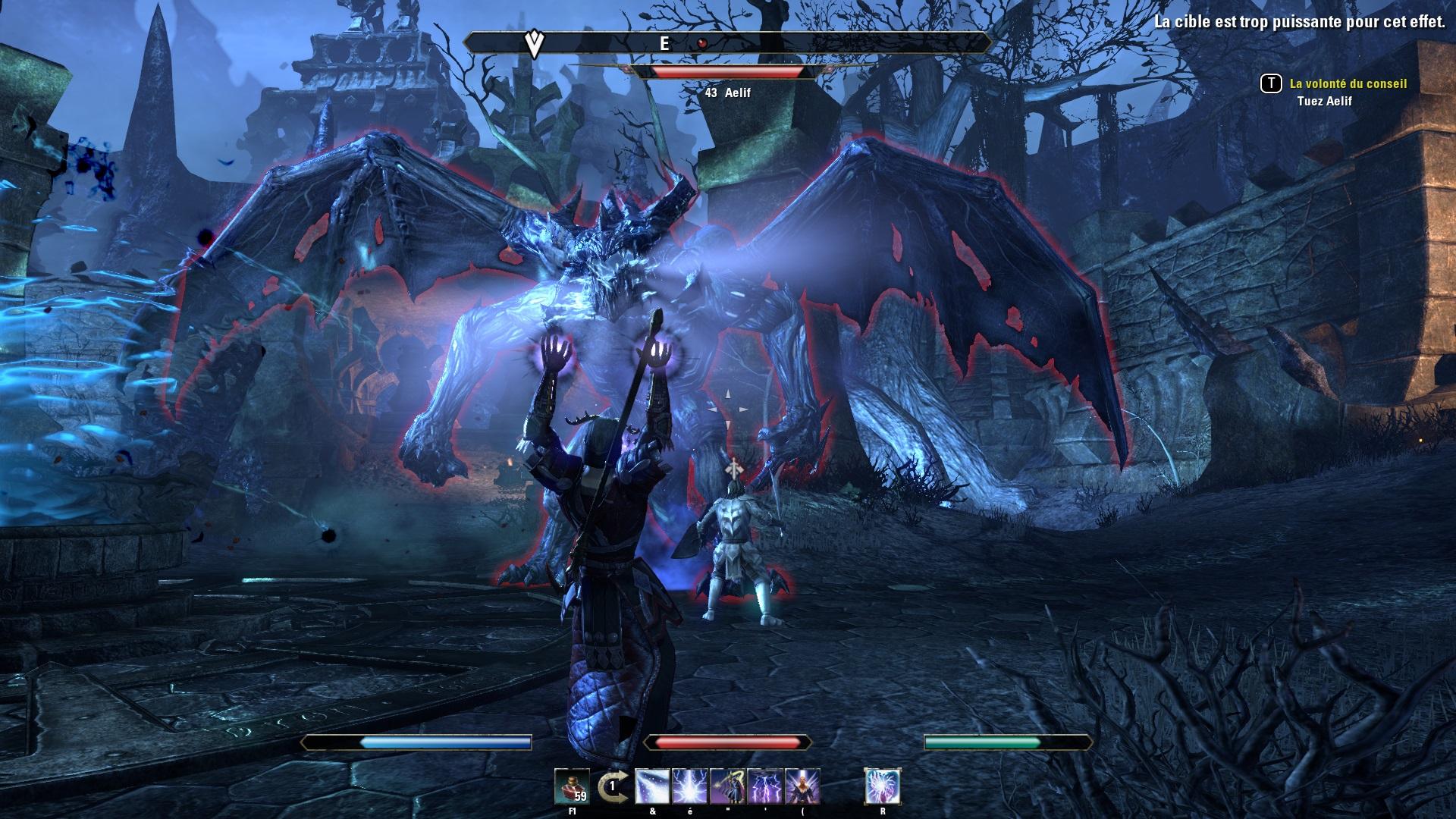 Elder Scrolls Online Image du jeu