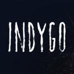 Indygo logo - 150x150